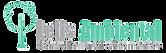 Logo Lelis PNG.png