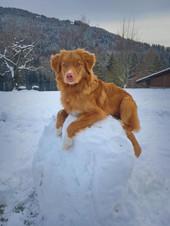 snoopy boule de neige.jpg