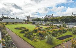 Flower Park in Lerwick