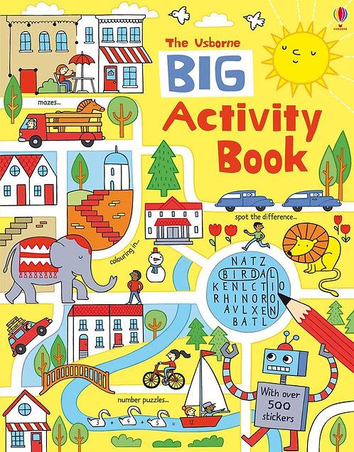 The Usborne Big Activity Book (9781409577416)