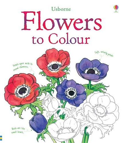 Flowers Colouring Book (9781409523178)