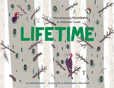 Lifetime (9781452107141)
