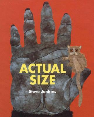 Actual Size (9781847801852)