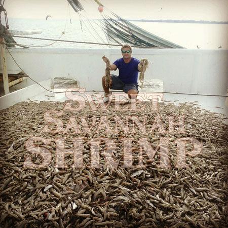 michael-home-shrimp.jpg