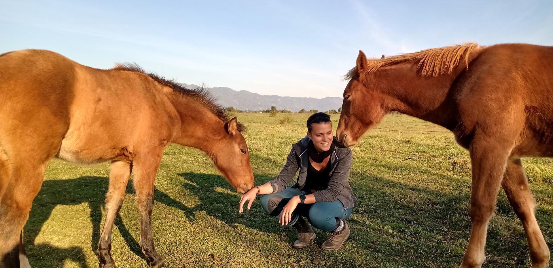 Conociendo a los más jóvenes de la manada