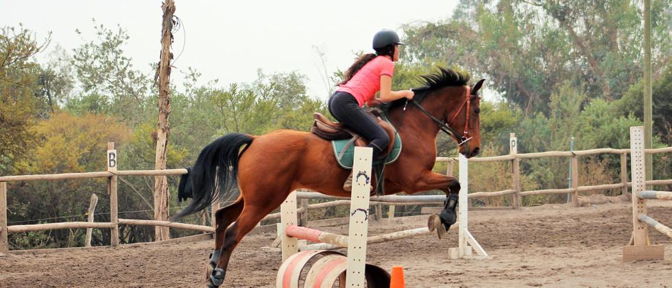 Competencia interna de salto