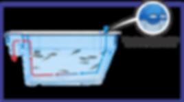 sistema aquarios.png