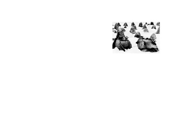 SCRAPBOOK_new (dragged) 38.jpg
