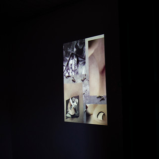 Video Corte/Crudo Sala 2