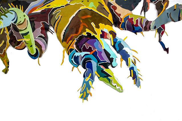 insecto sin fondo celesta.jpg