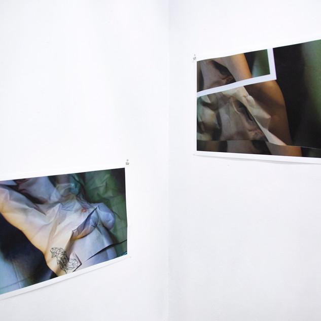 Corte/Crudo Florencia Alvarado