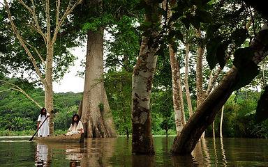 Artist residency Selva Lacandona Aramauca inmersion program
