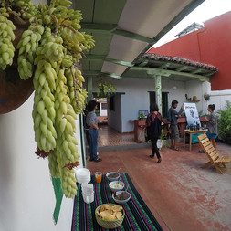 Aramauca Arte contemporáneo México