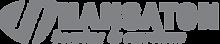 hansaton_logo.png