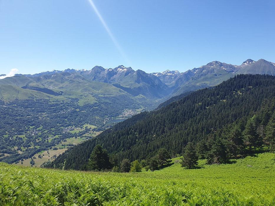 vallee_des_pyrenees_louron_montagne