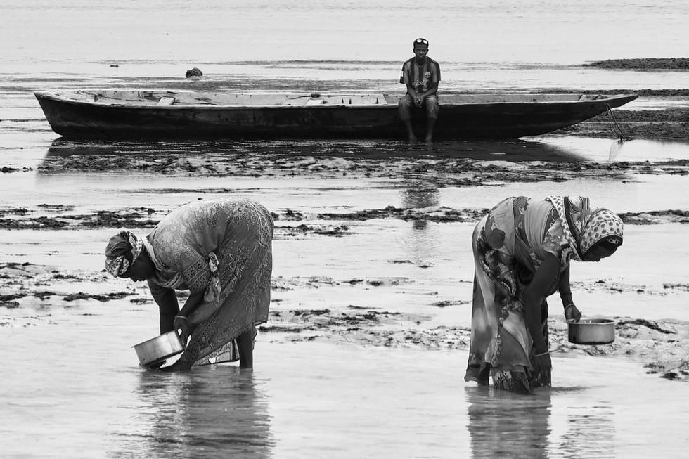 Tanzanian women working on a beach in Za