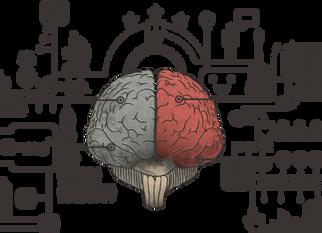 Neuropsicologia e Psicologia Clínica