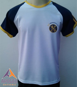 Camiseta SS Treinamentos - frente