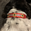 Thumbnail: STL Flag Pet Collar