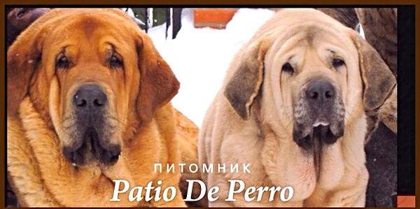 Питомник Патио Де Перро