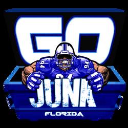 GO JUNK LOGO blue.png