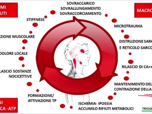 MECCANISMO NEUROFISIOLOGICO DI SCOMPARSA DEL DOLORE CON LE TECNICHE DI TRATTAMENTO SUI TRIGGER POINT