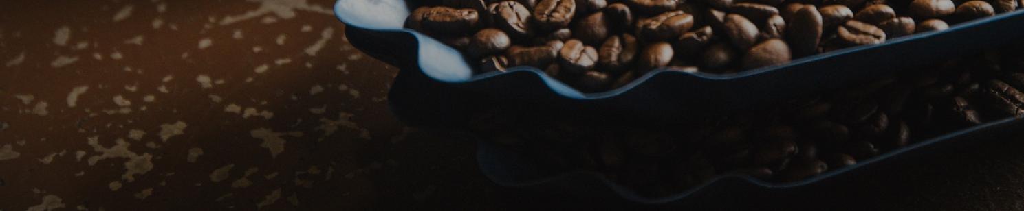bean-banner.png