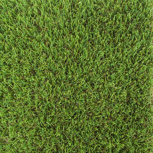 Merion Grass per m²