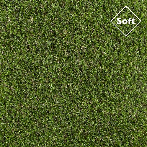 Pinehurst Grass per m²