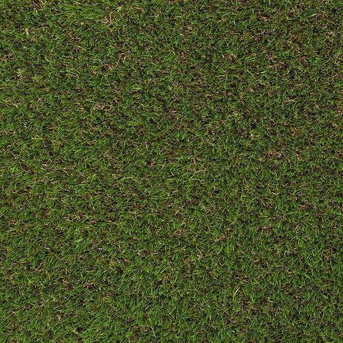 Augusta Grass per m²