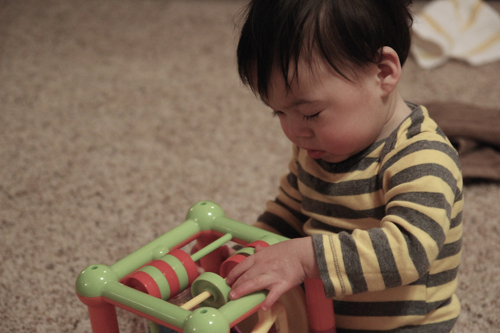 Arlen Playing With Toy.jpg
