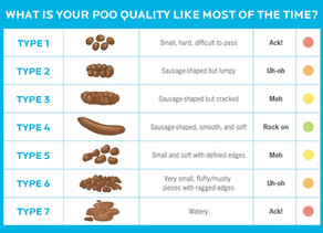 What your bowel habits say about your health?