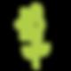Sunflower-green-logo.png