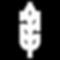 Wheat-logo.png