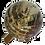 Thumbnail: Boule bois fossil