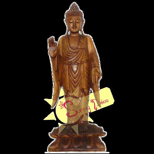 Bouddha enseignement debout