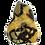 Thumbnail: Septaria jaune