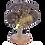 Thumbnail: Lampe coco