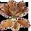 Thumbnail: Plateau fleur de lotus