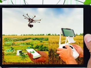 As Startups do agronegócio trazem soluções eficientes para o dia a dia do campo