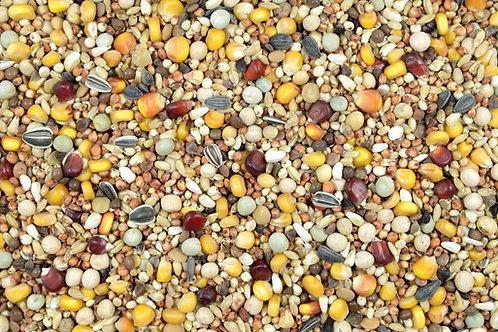 RL+ Uzgojno-Letna PLUS bez pšenice 25kg