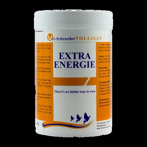 Extra Energy 300g /Vet. Schroeder-Tollisan