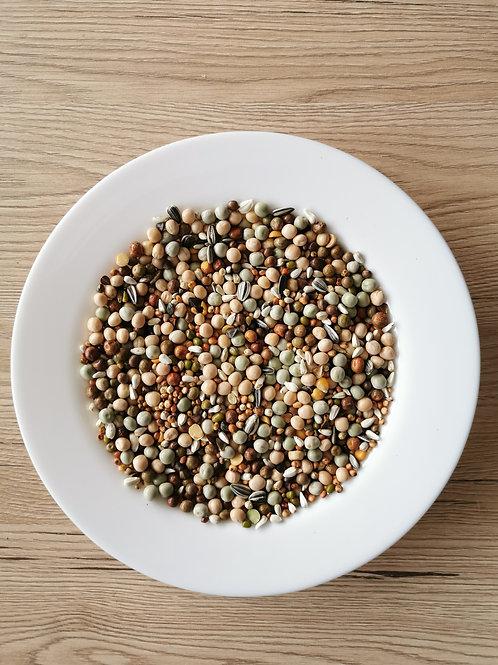Versele-Laga Protein graškovi 20kg