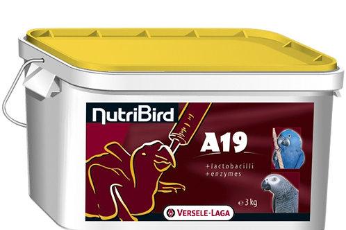 Nutri Bird A19 Hrana za ručno hranjenje ptica