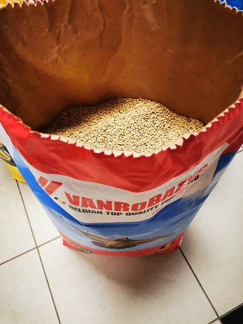 Neoljuštena riža paddy 1kg