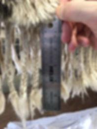Big shag rug fringe