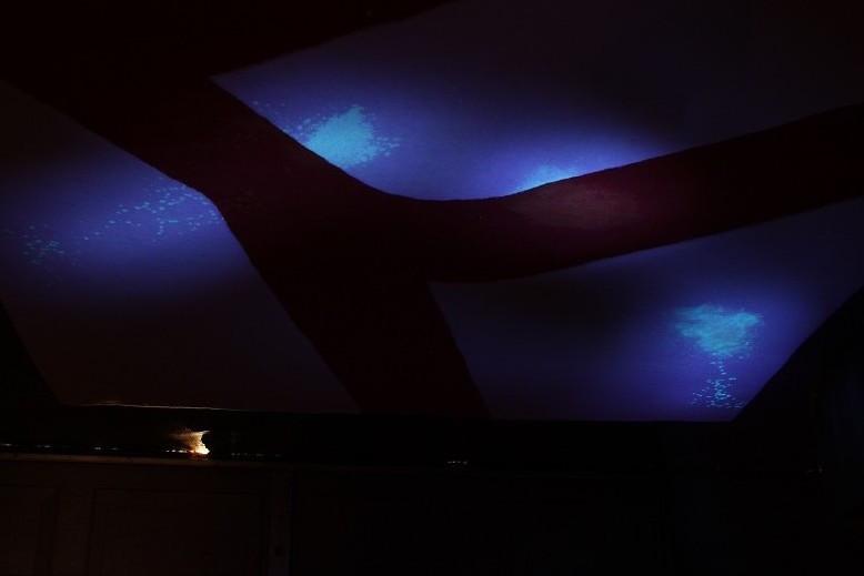 Area rug with pet urine under UV light