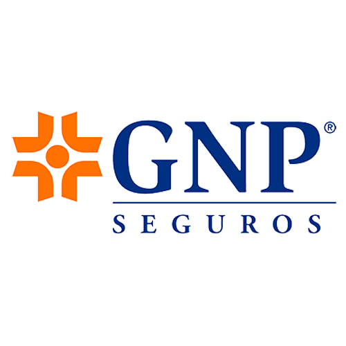 Seguros-gastos-medicos-Seguros-GNP.png