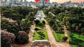 Restinga muda enredo - Parque Farroupilha é o novo tema do cisne