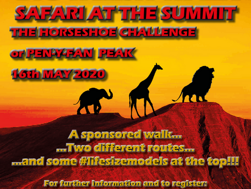 Hospice of the Valleys - Big Welsh Walk Safari at the Summit